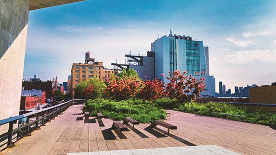 New York The High Line
