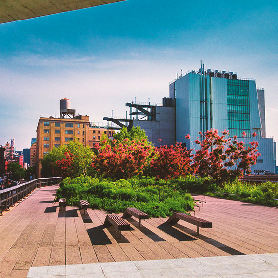 The High Line in NYC