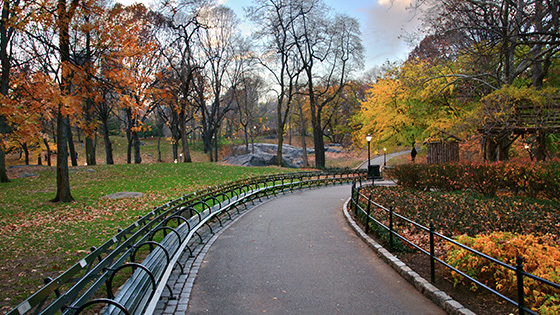 New York Hotel offers Upper West Side & Central Park Tour